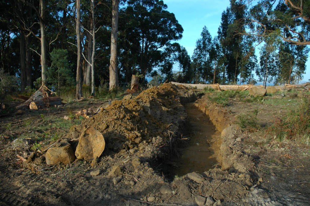 On the level: the first absorption trench following the contours of the site